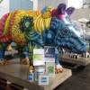 Wild Rhino Event